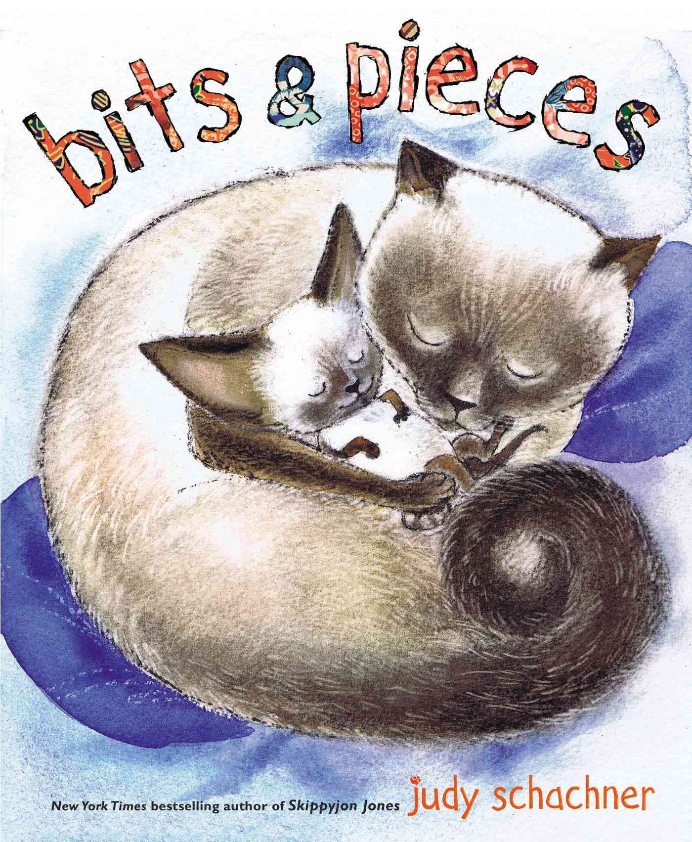 Bits and Pieces By Schachner, Judith Byron