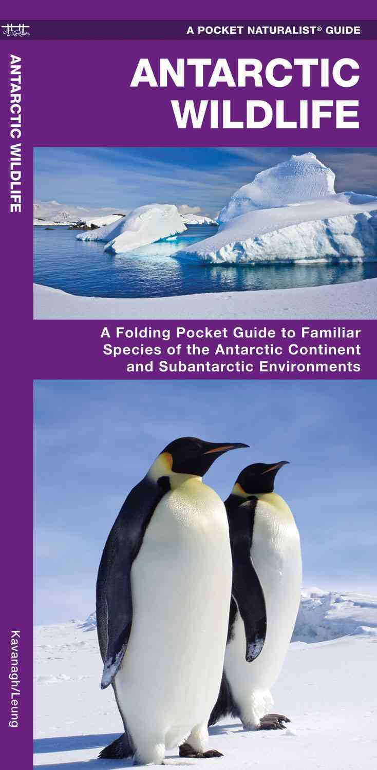 Antarctic Wildlife By Kavanagh, James/ Leung, Raymond (ILT)
